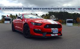 2016 Ford Mustang Shelby GT350 - This Snake Has Bite